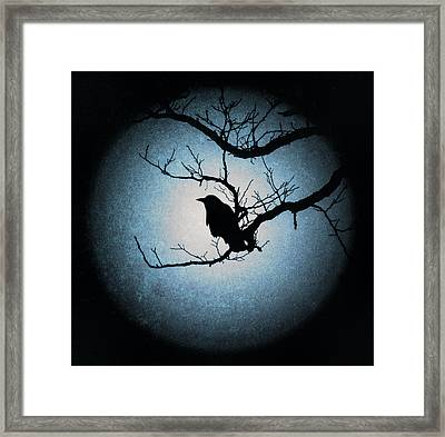Winter's Light Black Crow Silhouette  Framed Print by Terry DeLuco