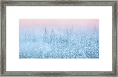 Winter's Magic Framed Print