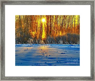 Winters Morning Framed Print by Robert Pearson