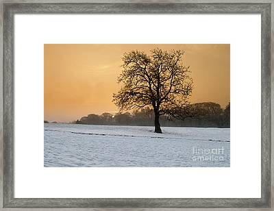 Winters Morning Framed Print