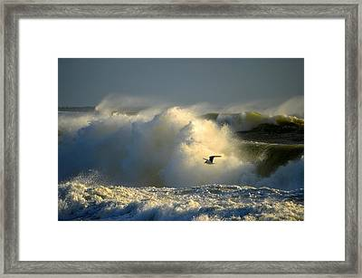Winter's Passing Framed Print