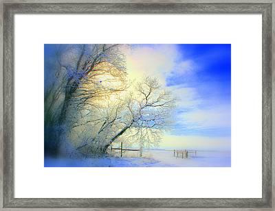 Winters Pretty Presents Framed Print by Julie Lueders