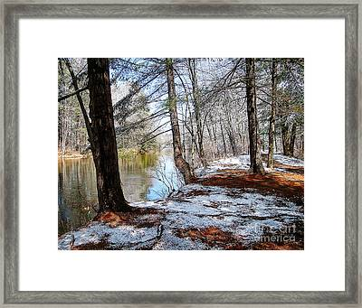 Winter's Remains Framed Print
