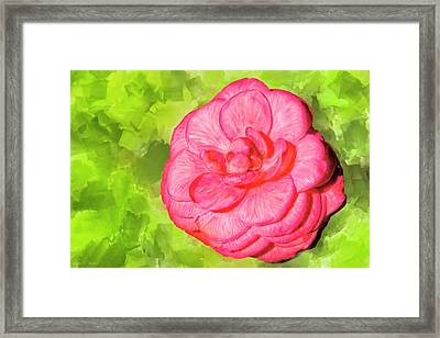 Framed Print featuring the mixed media Winter's Rose - The Camellia by Mark Tisdale