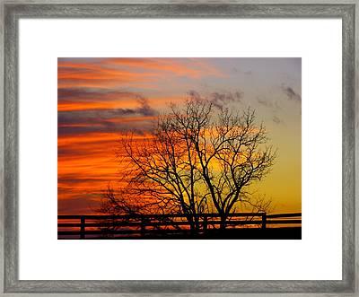 Winter's Scene Framed Print by Donald C Morgan