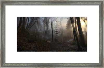 Winter's Slight Return Framed Print by Norbert Maier