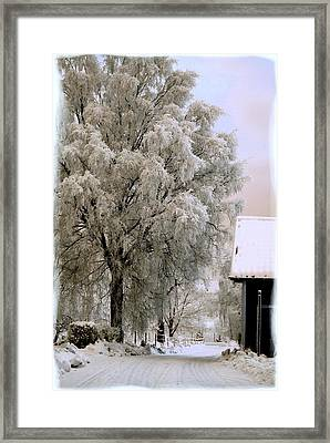 Winter's Tale Framed Print by TinaDeFortunata