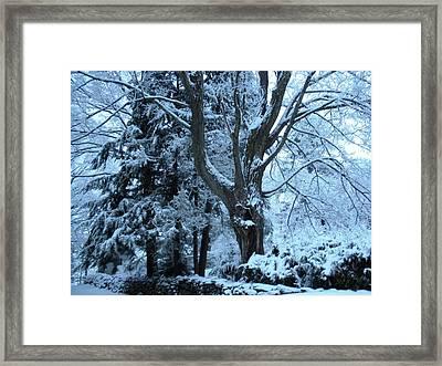 Winter's Touch Framed Print by Karen Moulder
