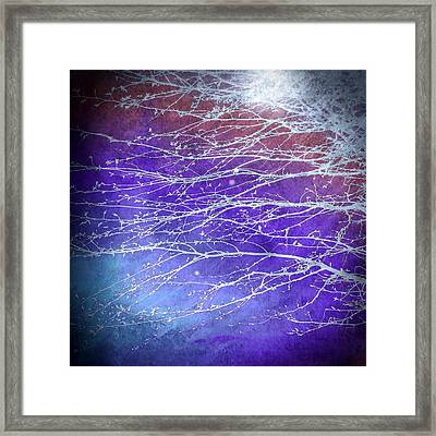 Winter's Twilight Framed Print by Susan Maxwell Schmidt