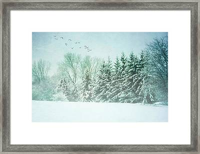 Winter's Watch Framed Print