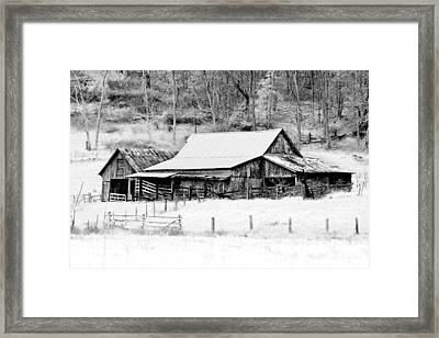 Winter's White Shroud Framed Print