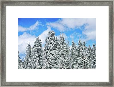 Winterscape Framed Print by Jeff Kolker