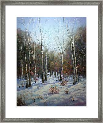 Winterscape Framed Print by Paula Ann Ford
