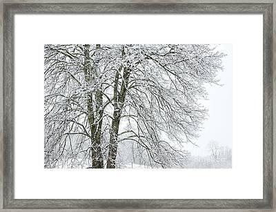 Wintertime In West Virginia Framed Print by Thomas R Fletcher