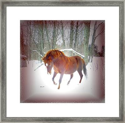 Wintertime Magic Framed Print