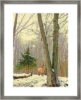 Wintertime Moment Framed Print