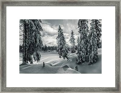 Winter Wonderland Harz In Monochrome Framed Print