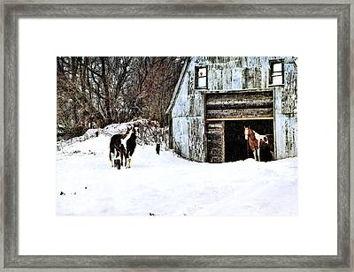 Framed Print featuring the photograph Wintery Day by Gary Smith