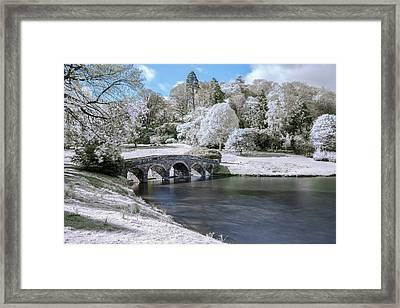 Wintery Garden Framed Print by Joana Kruse
