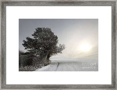 Wintery Landscape Framed Print by Angel  Tarantella