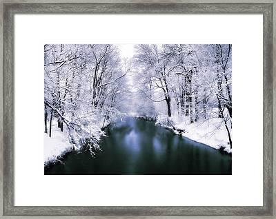 Wintry White Framed Print