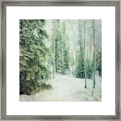Wintry Woods Framed Print by Priska Wettstein