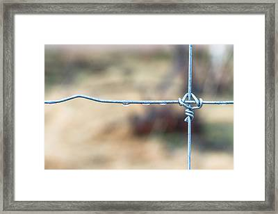Wire Fence Framed Print by James BO Insogna