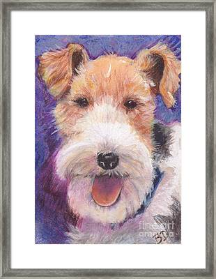 Wire Fox Terrier Framed Print by Barbara Donati