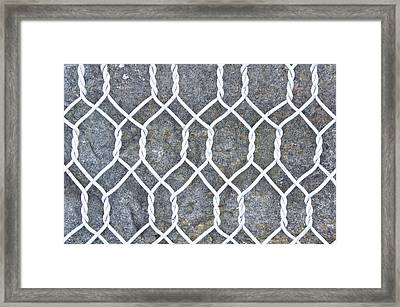 Wire Mesh Framed Print by Tom Gowanlock