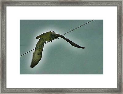 Wire Message Framed Print