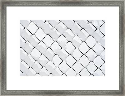 Wire Netting In Winter Framed Print