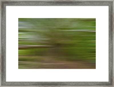 Wise One X Framed Print by Jon Glaser