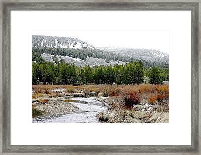 Wise River Montana Framed Print