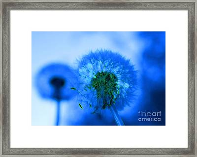 Wish Away The Blues Framed Print by Valerie Fuqua