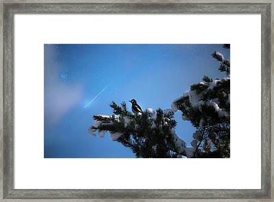 Wish Upon A Shooting Star Framed Print