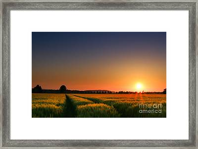 Wish You Were Here Framed Print by Franziskus Pfleghart