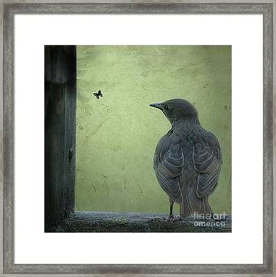 Framed Print featuring the photograph Wishful Thinking by Jan Piller