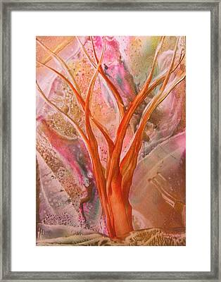 Wishing Tree Framed Print by John Vandebrooke