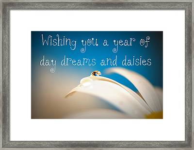 Wishing You A Year Of Day Dreams And Daisies Card Framed Print by Lisa Knechtel