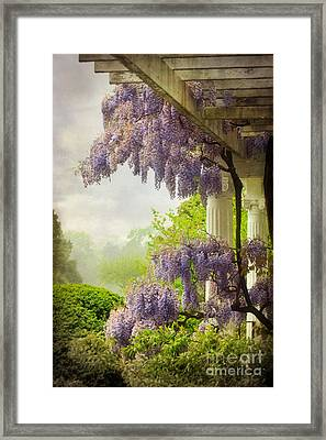 Wisteria In A Spring Shower Two Framed Print by Susan Isakson