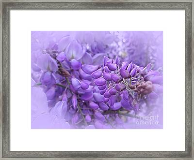 Wisteria In The Mist By Kaye Menner Framed Print by Kaye Menner
