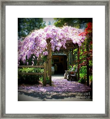 Framed Print featuring the photograph Wisteria by Leslie Hunziker