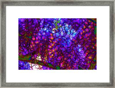 Wisterias Framed Print by Jean-Marc Lacombe