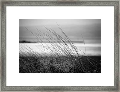 Wistful Framed Print by Spikey Mouse Photography