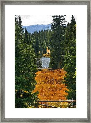 With A View Framed Print