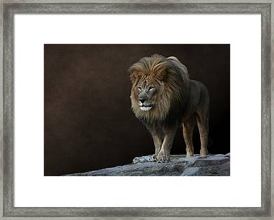 With Age Comes Wisdom Framed Print