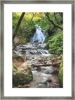 Framed Print featuring the photograph With All I Have by Laurie Search