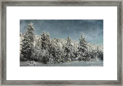 With Love - Winter  Framed Print by Beve Brown-Clark Photography