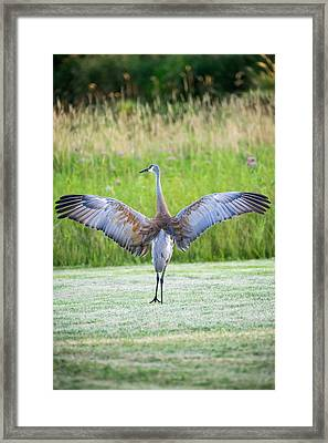 Framed Print featuring the photograph With Open Arms by Steven Santamour