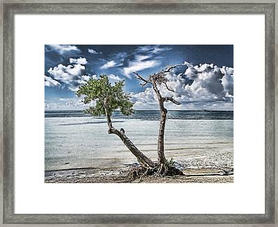 With Or Without You Framed Print by Joachim G Pinkawa